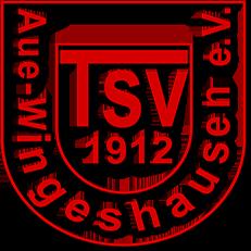 TSV Aue-Wingeshausen